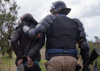 SAPS Management can Legally Overrule the IPID